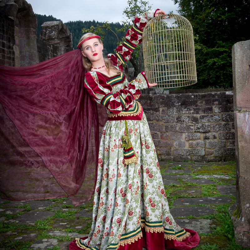 Renaissance Kleid FL 0 Flora, der schöne Vogel mit goldenem Käfig renaissance mode mittelalter barock rokoko kostÃ